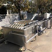 AT4000厂家供应娃娃菜清洗机 果蔬加工设备