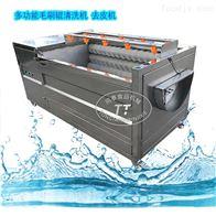 TQX-1000山药根茎类蔬菜去皮机全自动多功能清洗机