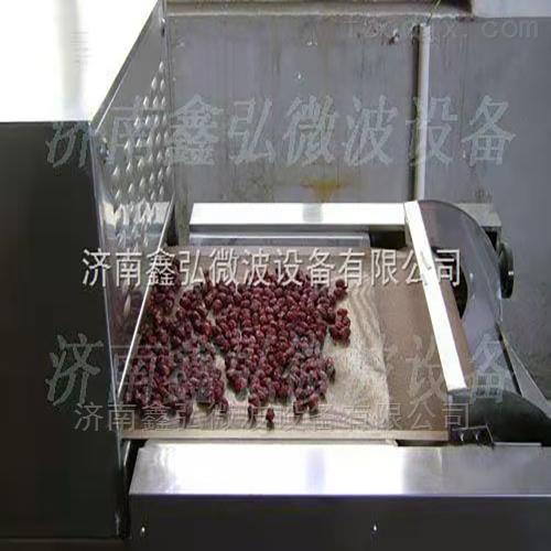 红枣微波干燥杀菌设备