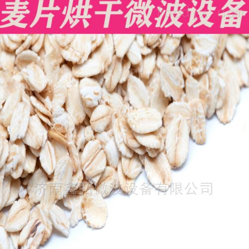 燕麦片干燥杀菌设备