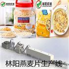 滕州水果燕麦片生产设备
