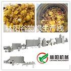LY65风味谷物脆燕麦片设备