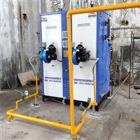 大功率环保省燃料生物油超低氮燃气蒸汽锅炉