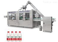 CYT-300系列小型全自动小型瓶装纯净水灌装机
