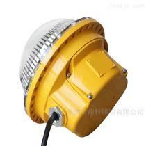 BR9300生产厂家LED节能长寿吸顶防爆灯5W/15W