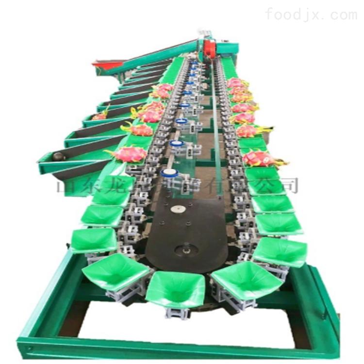 陕西猕猴桃分级机 水果分选分果好设备