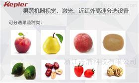 圣女果重量大小颜色选果机