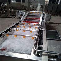 QX不锈钢净菜设备全自动蔬菜清洗流水线