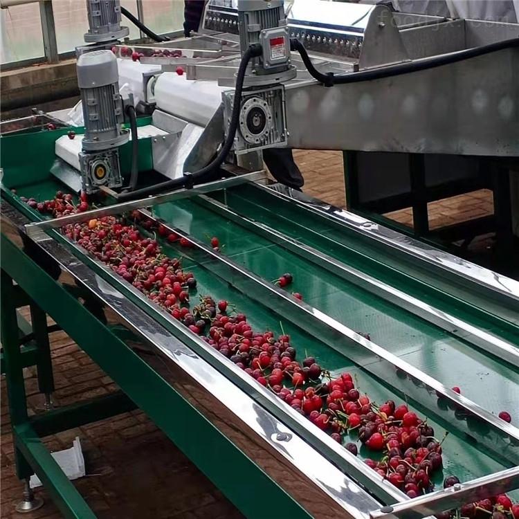 樱桃分选机有什么规格水预冷分级设备