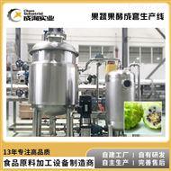 CXL-JS定制供应 猕猴桃酵素机 果蔬酵素成套生产线