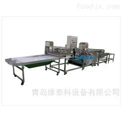 WTK-DC-QX-5韭菜、香葱、大葱专用清洗机