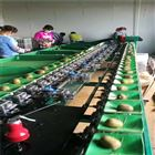XGJ-SZ湖南果蔬分级设备  猕猴桃选果机