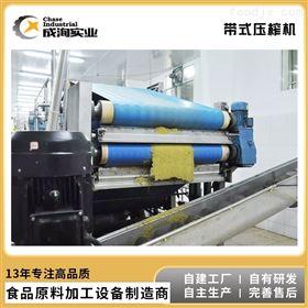 CXL-YZ* 商用果蔬带式榨汁机 带式压榨机