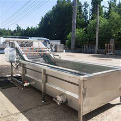 RC5000型生姜大枣去泥去毛杂清洗设备