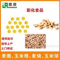 TSE65-III膨化玉米球食品生产线机械设备