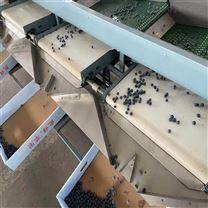 蓝莓选果机一机多用直径分级不伤果快速分级
