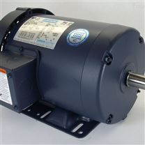 高效耐用美国LEESON电机,LEESON防爆电机