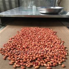 XH-30KW五香花生米微波熟化干燥设备