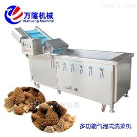 XC-2000不锈钢高效节能提子洗菜机