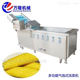 XC-2000万能的节能款空心菜洗菜机