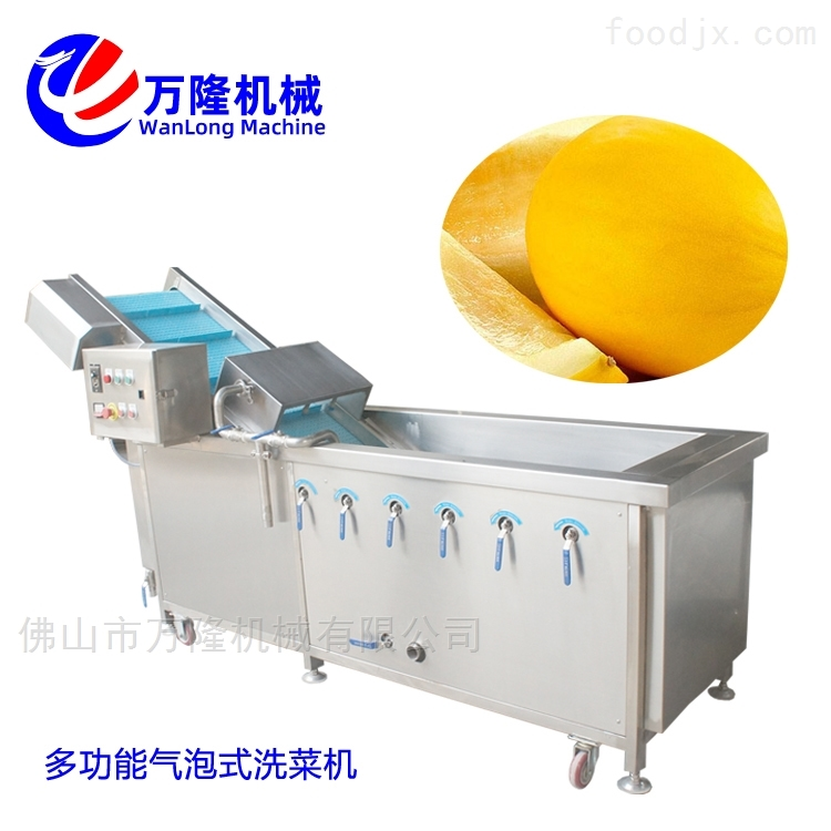 不锈钢供应哈密瓜洗菜机质量可靠