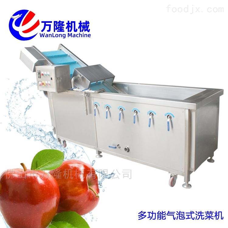 大型直销蔓越莓洗菜机规格齐全