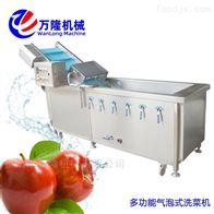 XC-2000大型直销蔓越莓洗菜机规格齐全