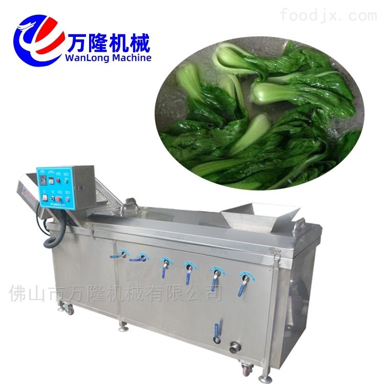 四季豆土豆菊花连续式漂烫机专业生产厂家