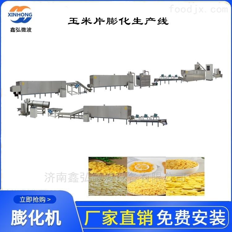 双螺杆膨化设备 玉米片膨化机生产线