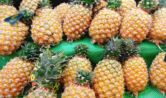 菠蘿暢銷全國各地 智能分級機滿足多層級消費需求