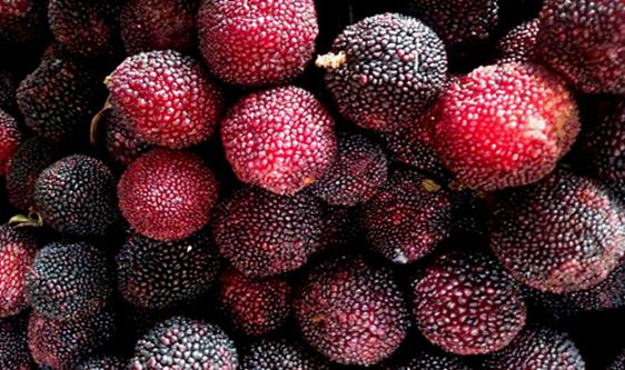 水果采后产量损失大 果品深加工成产业重要发力点