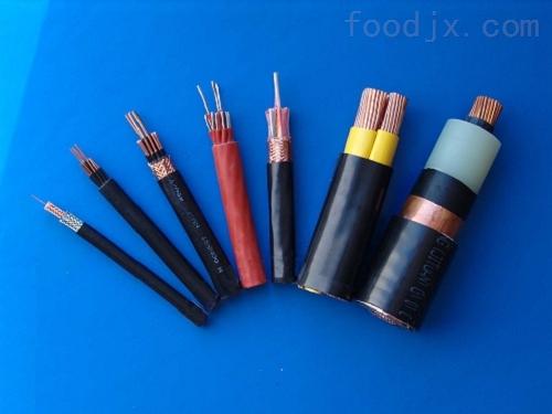 南陵县硅橡胶计算机电缆ZR-DJGGP-2*6
