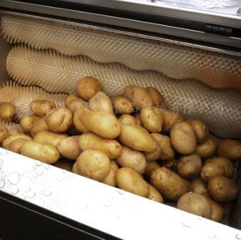土豆去皮机