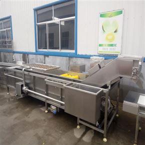 青菜清洗机 小白菜加工清洗流水线